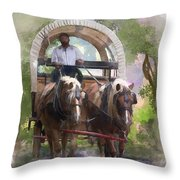 Crossing The Creek Throw Pillow