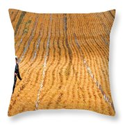 Crossing The Field Throw Pillow