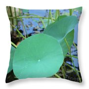 Crossing The Lily Pond Outback Nubmer Two Square Throw Pillow