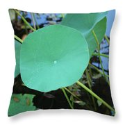 Crossing The Lily Pond Outback Number One Throw Pillow