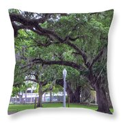 Crossing Trees Throw Pillow