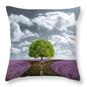 Crossroad In Lavender Meadow Throw Pillow