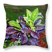 Crotons 2 Throw Pillow