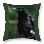 Crow-6870 Throw Pillow