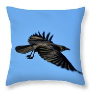 Crow Flyby Throw Pillow