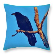 Crow In A Tree Throw Pillow