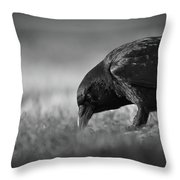 Crow In Grass Throw Pillow