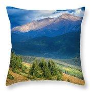 Crow On A Mountainside Throw Pillow