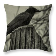 Crow Perched On A Old Column In Rain Throw Pillow