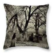 Crow Waits On Tombstone Throw Pillow