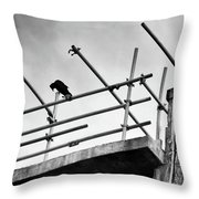 Crow Watches Over Throw Pillow
