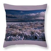 Crowley Lake Throw Pillow