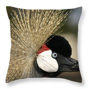 Crown Crane Close Up Throw Pillow