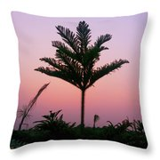 Crown In Pink Sky Throw Pillow
