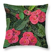 Crown Of Thorns Delight Throw Pillow
