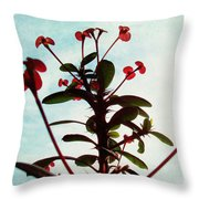 Crown Of Thorns Throw Pillow by Shawna Rowe