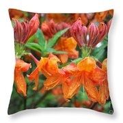 Crowned Creamsicles Throw Pillow