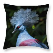 Crowned Pigeon Throw Pillow