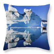 Cruising Between The Icebergs, Greenland Throw Pillow