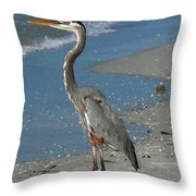 Cruising The Beach Throw Pillow