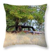 Cruising The  Weeds Throw Pillow