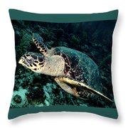 Cruising Turtle Throw Pillow