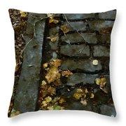 Crumbling Throw Pillow