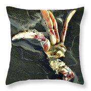 Crustacean On The Shore Throw Pillow