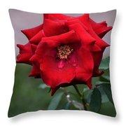 Crying Rose Throw Pillow