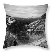 Crying Seagull Black And White Throw Pillow