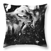 Cryptorchid Throw Pillow
