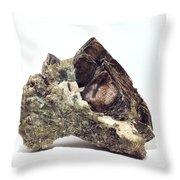 Crystal 2 Throw Pillow