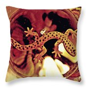 Crystal Ball Project 28 Throw Pillow