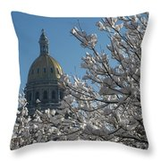 Crystal Capitol Throw Pillow