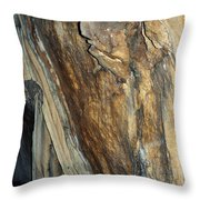 Crystal Cave Walls Throw Pillow