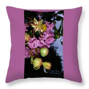 Crystal Earbobs 2 Throw Pillow