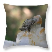 Crystal Frog Throw Pillow