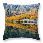 Crystal Lake Area 1 Throw Pillow