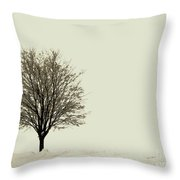 Crystal Lake In Winter Throw Pillow