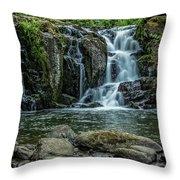 Crystal Pool Falls Throw Pillow