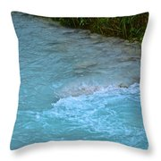 Crystal Waters Throw Pillow