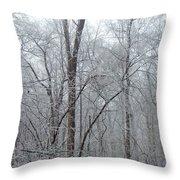 Crystal Woods Throw Pillow
