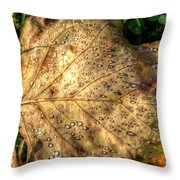 Crystaline Pure Throw Pillow