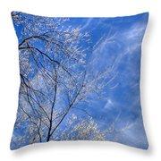 Crystalline Sky Throw Pillow