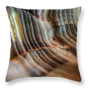 Crystals And Stones Shell 4721 Throw Pillow