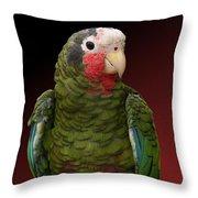 Cuban Amazon Parrot Throw Pillow