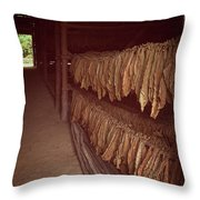 Cuban Tobacco Shed Throw Pillow