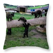 Cubs At The Playground Throw Pillow