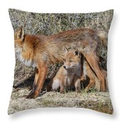 Cubs Drinking Throw Pillow