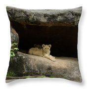 Cubs In Cave Throw Pillow
